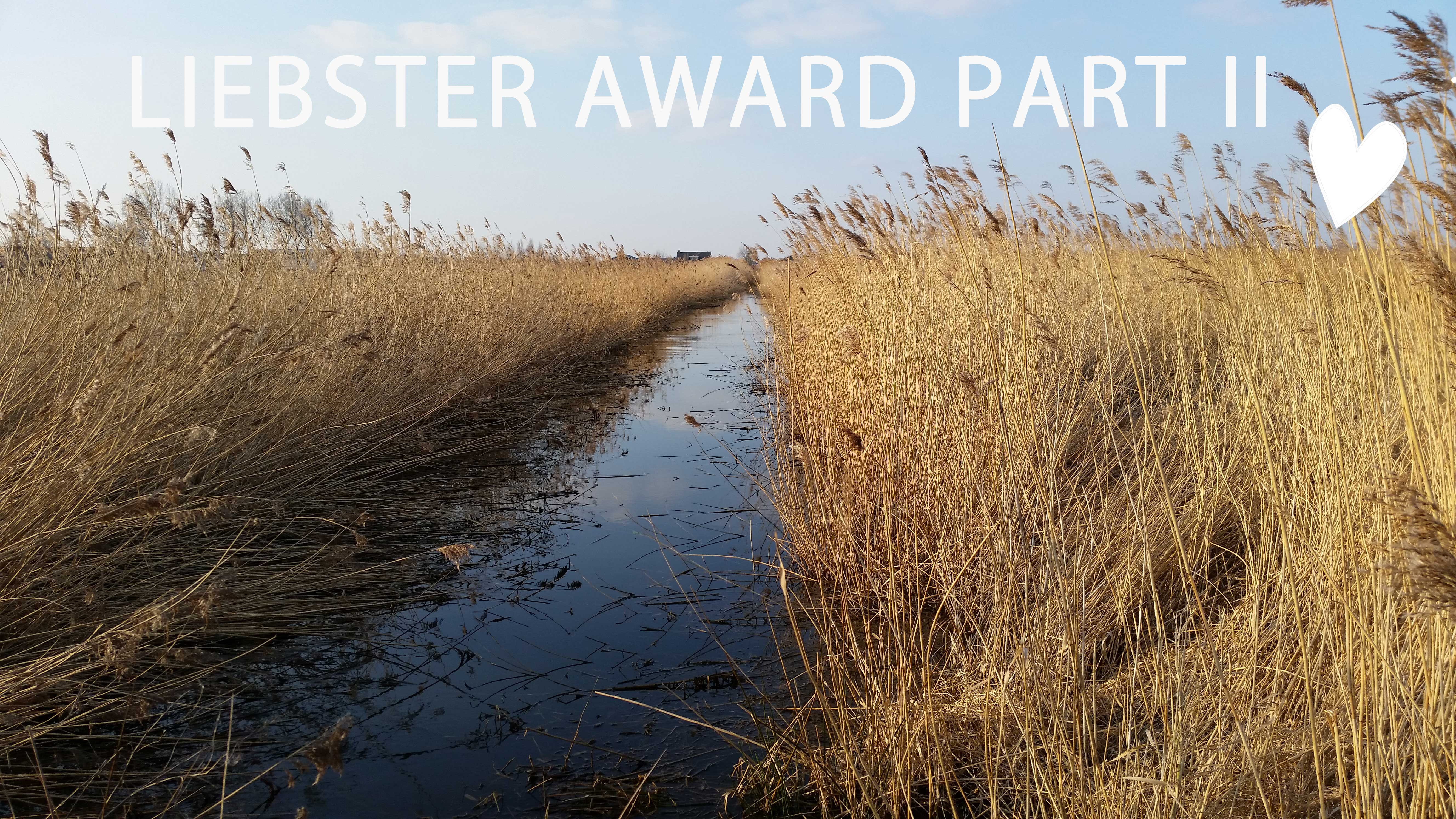 liebster award header