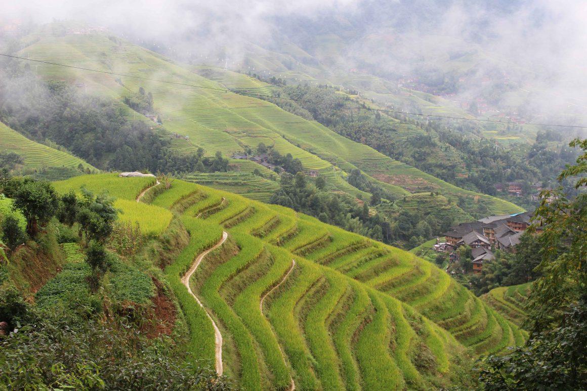 Hiken-in-Pingan-regio-Longji-rijstterassen