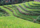 Fotoreeks: hiken langs de Longji rijstterrassen