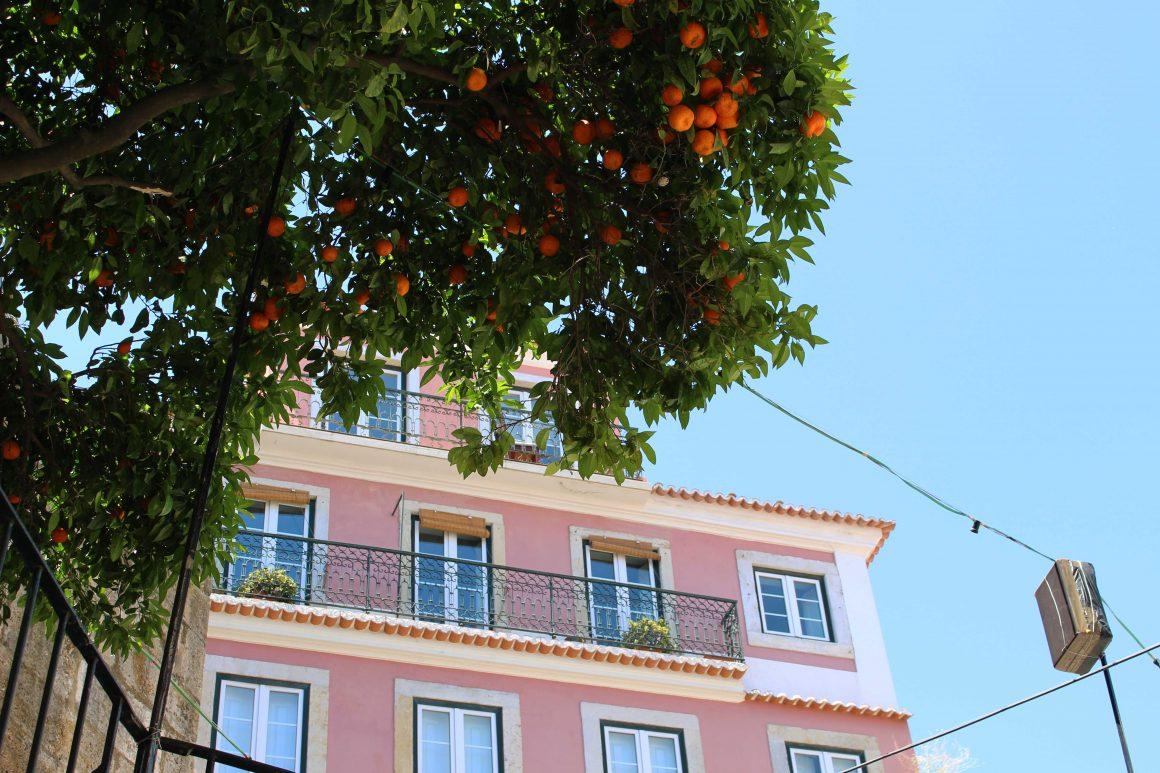 lissabon-alfama-sinaasappels