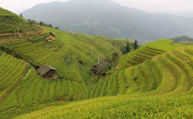 China in vier weken: onze reisroute en tips