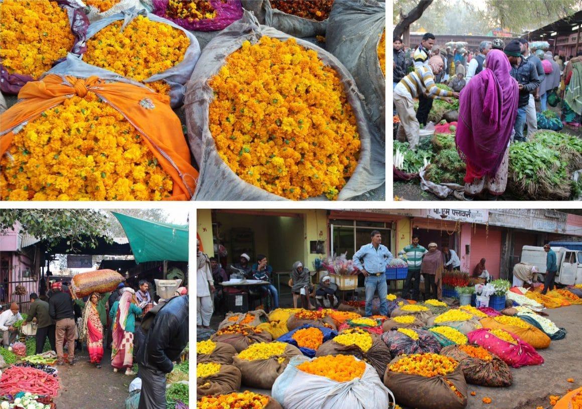 Jaipur India bloemenmarkt