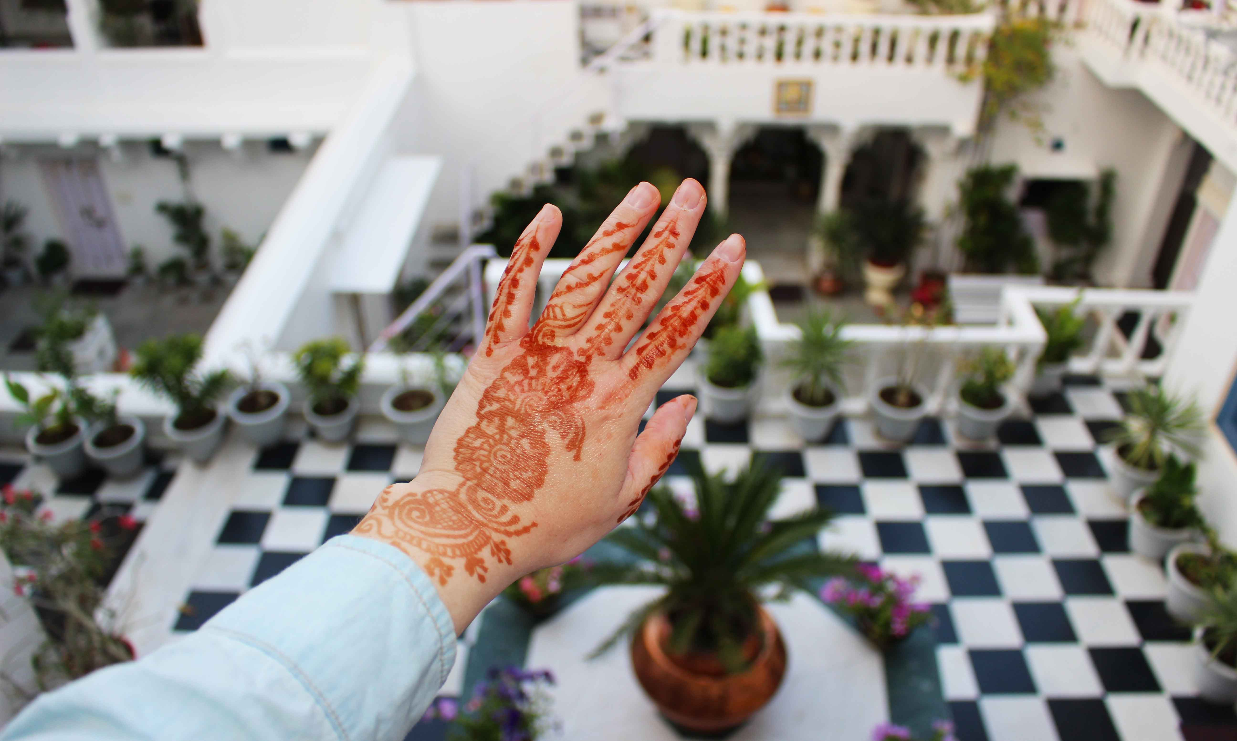 Henna India Udaipur
