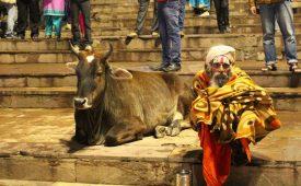 Een speeddate met Varanasi: 24 uur in de heilige hindoestad