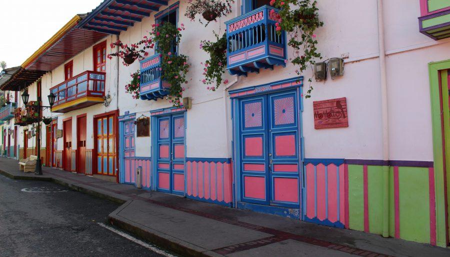 Colombia op haar mooist: Salento & Cocora Vallei