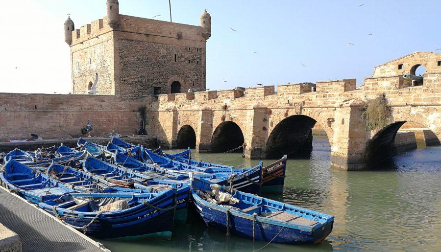 Marokko op z'n charmantst: 10 tips voor relaxed Essaouira