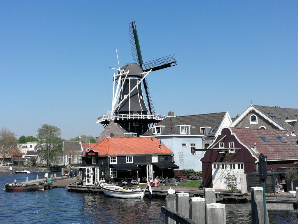 Adriaan Molen in Haarlem